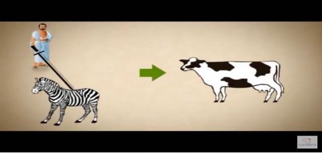 Le mouton de rachetage et le mouton de l'offrande en Islam - Al Fiqh
